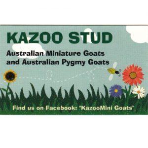 Kazoo logo